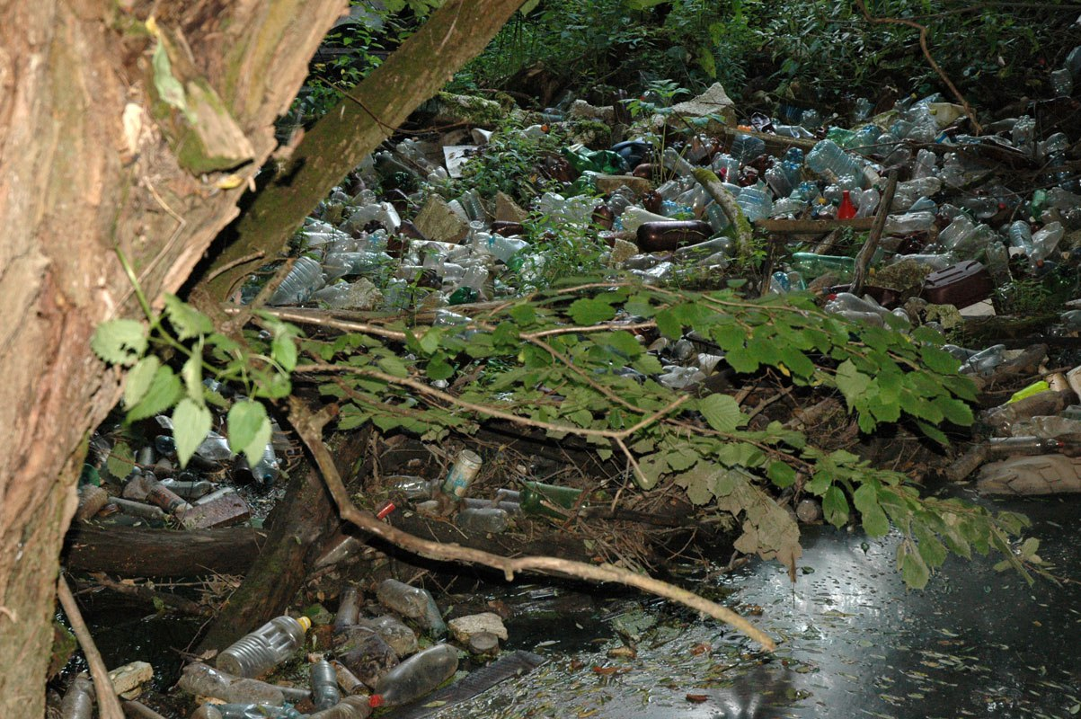 Двухметровую арт-рыбу сделают извыловленных вреке Терепец вКалуге отходов