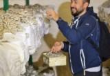 В Калужской области открылся уникальный грибоводческий комплекс