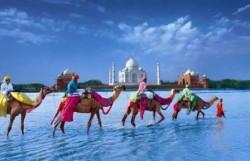 Индия-Тревел,  туристическое агентство