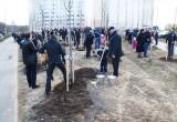 Как на выходных в Калуге сажали деревья