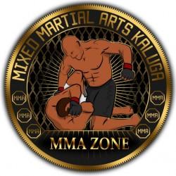 MMA ZONE, клуб боев смешанного стиля