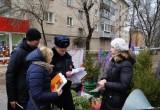 Калужские полицейские провели рейд по елочным базарам