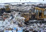 Калужские власти не знают, куда девать мусор