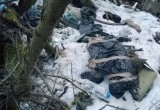 Шокирующая ситуация: ветклиники устроили свалку трупов животных у детсада