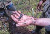 Поисковики нашли останки солдата из Калужской области