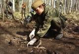 Минобороны РФ начало в Калужской области поисковую экспедицию