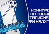 Горожанам предложили придумать талисман для ФК «Калуга»