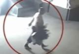 Полиция задержала подозреваемого в краже деревьев на вокзале