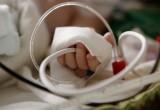 Внимание! Срочно требуется кровь для больного ребенка!