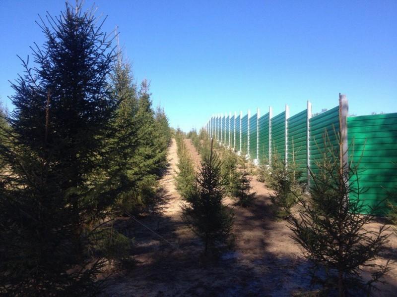 ВКалужской области открыли 1-ый в Российской Федерации экодук