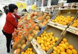 В Калуге запретят продажу опасных египетских овощей и фруктов