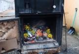 В Калужской области сожгли партию роз