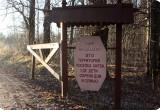 Скандал в Калужской области: центр поддержки детей-сирот обвиняют в сексуальных домогательствах и разврате