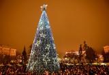 Власти пообещали не оставить калужан без елок на Новый год, однако бюджет изменили