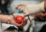 28 октября в Калуге пройдет день доноров