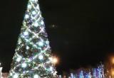 С городской новогодней елки уже украли иллюминацию