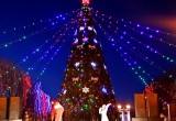 Перечень адресов, где будут установлены новогодние елки в Калуге
