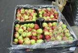 В Калужской области уничтожили партию яблок