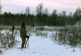 Калужский браконьер дорого заплатил за убитого оленя