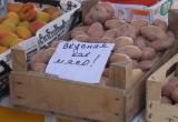 Исследования: россияне стали заменять мясо картошкой с майонезом. Опрос калужан!
