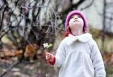 8 марта в Калуге потеплеет до +9 градусов!