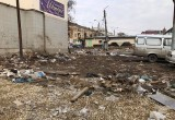 Калужан позовут сажать деревья на территории бывшего Центрального рынка