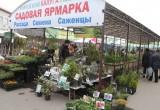 """Градоначальник рассказал, как будет развиваться новый рынок """"Калуга"""""""
