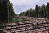 """""""Северный"""" обход Калуги начнут строить в 2019 году"""