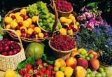 В Калуге объявлен конкурс на лучший урожай
