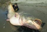 В Калужской области отпразднуют День рыбака