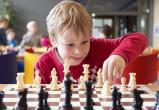 В калужских школах введут уроки шахмат