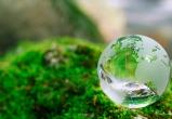 В Калужской области выберут самую экологически ответственную организацию