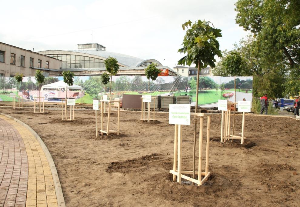 Накануне Дня города положено начало новому парку
