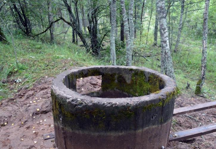 В лесу обнаружено оборонительное сооружение времен войны