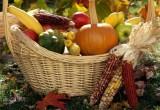 В Калуге пройдет выставка даров сада и огорода
