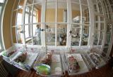 Следователи ищут виновных в смерти новорожденного