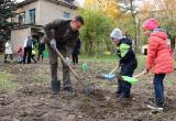 Калужский депутат внес вклад в озеленение города