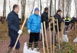 На территории Губернского парка высадили около 3000 саженцев деревьев