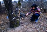 Собаку спасли от голодной смерти в лесу
