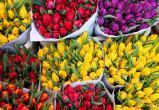 В честь женского праздника в Калуге будут работать цветочные ярмарки