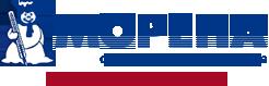 Морена,  оптово-розничная компания