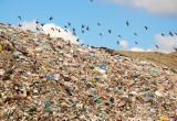 Свалка мусора на территории предприятия привлекла внимание прокуратуры