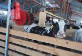 В Калужской области появилось ещё одно роботизированное производство