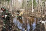 В Калужской области поисковики подняли из болота самолёт времён Великой Отечественной войны