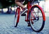 Велосипедистов могут обязать сдавать правила дорожного движения