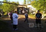 Зоозащитники нашли трупы щенков около одного из калужских приютов