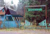 Депутаты предложили перепрофилировать два детских лагеря