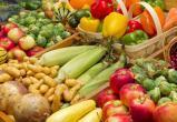 В Калуге стартовал конкурс для дачников и садоводов