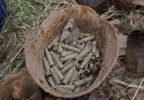 В Калужской области обнаружили останки советских бойцов и солдата вермахта