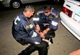 Пьяный водитель осужден за драку с инспекторами ДПС